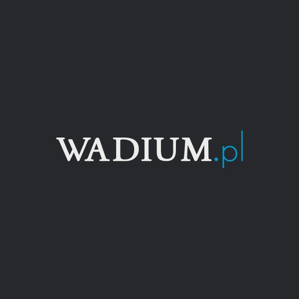 Wadium.pl Logo